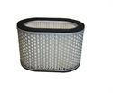 Picture of TL1000S AIR FILTER ELEMENT HFA3901