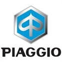 Picture for category PIAGGIO LEVERS