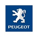 Picture for category PEUGEOT LEVERS