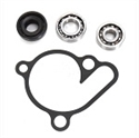 Picture for category WATER PUMP PARTS