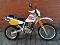 Picture of SUZUKI DR250 WHITE