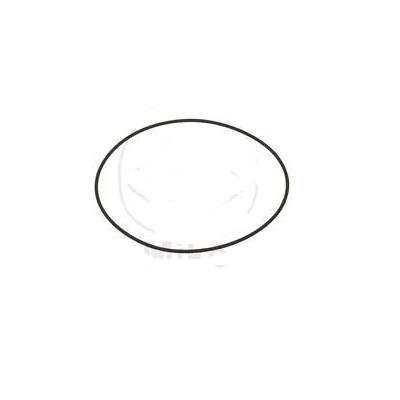 Picture of 0770105020 O-RING 105.00X2.00          07